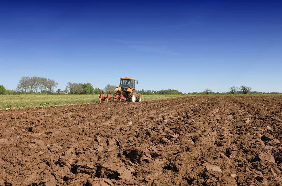 Image de la catégorie Travail du sol